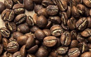 Jaką kawę wybrać – przegląd popularnych rodzajów kaw ziarnistych