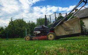 Jak zadbać o części do swojej kosiarki i traktorka?